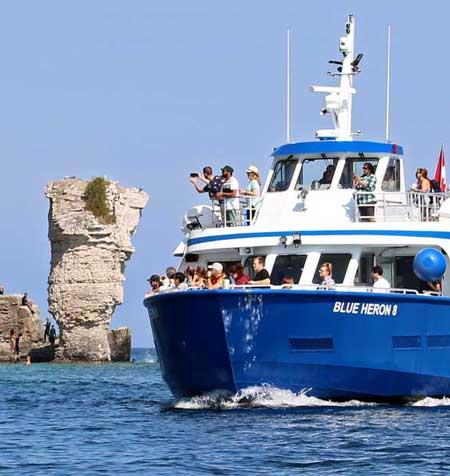 Tobermory Boat Cruise to Flowerpot Island Blue Heron